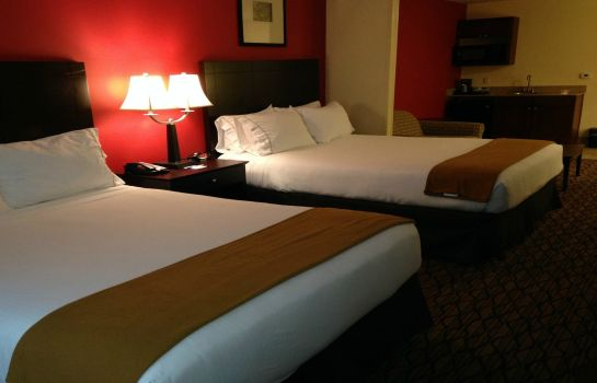Suite Holiday Inn Express & Suites NILES