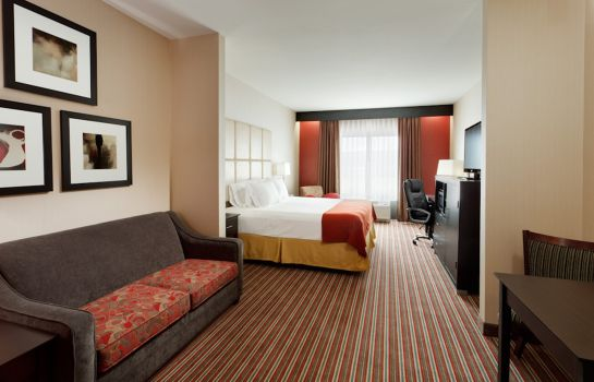 Suite Holiday Inn Express & Suites YORK NE - MARKET STREET