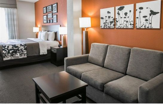 Suite Sleep Inn and Suites Houston I - 45 Nort Sleep Inn and Suites Houston I - 45 Nort