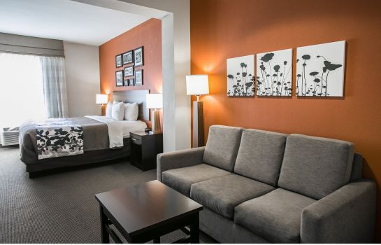 Chambre Sleep Inn and Suites Houston I - 45 Nort