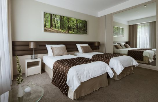Single room (standard) Narvil Conference & Spa