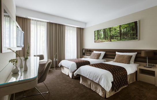Double room (standard) Narvil Conference & Spa