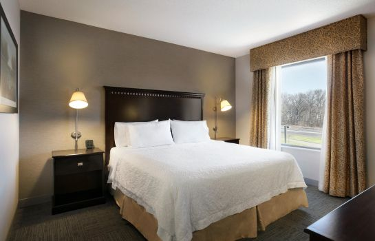 Suite Hampton Inn - Suites Mahwah NJ