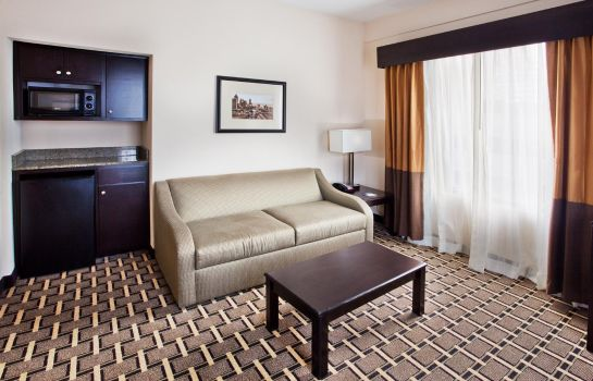 Suite Holiday Inn Express & Suites ATLANTA DOWNTOWN
