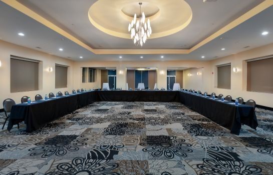 Conference room Holiday Inn Express & Suites ATLANTA DOWNTOWN