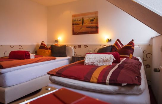 Double room (standard) Oberkasseler Hof Pension