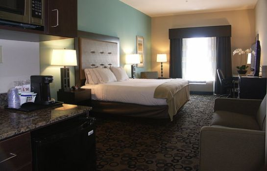 Suite Holiday Inn Express & Suites CLEVELAND NORTHWEST