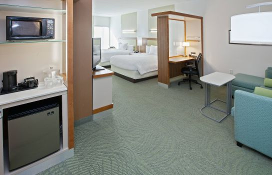 Suite SpringHill Suites Chattanooga Downtown/Cameron Harbor