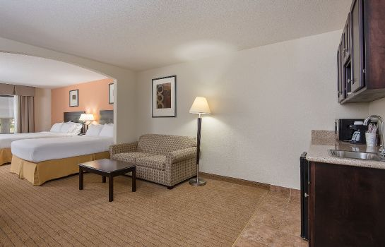 Suite Holiday Inn Express & Suites LAFAYETTE EAST