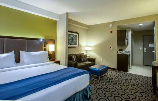 Suite Holiday Inn Express & Suites CHARLESTON ARPT-CONV CTR AREA