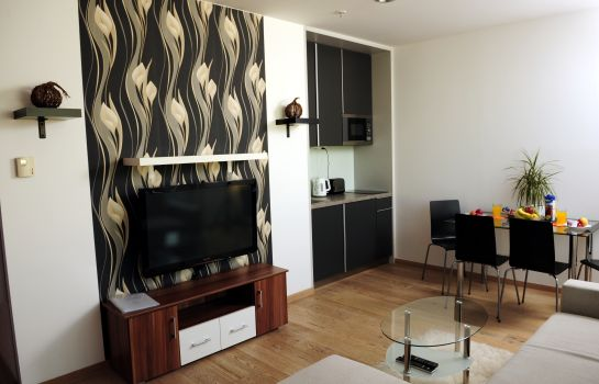 Chambre double (standard) VN17 Apartments Wenceslas Sq. Apartments