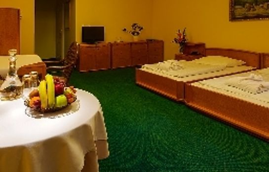 Chambre double (standard) Wellness & Treatment Hotel GHC