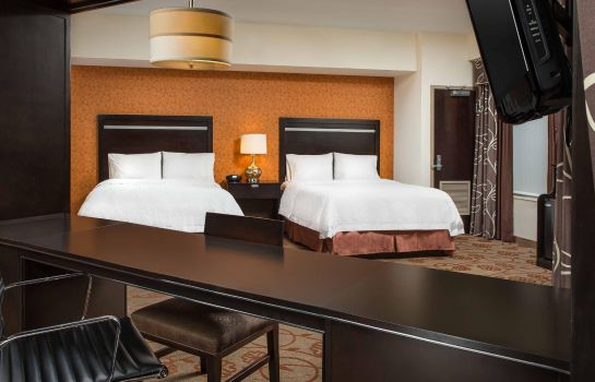 Suite Hampton Inn - Suites Chattanooga-Downtown TN