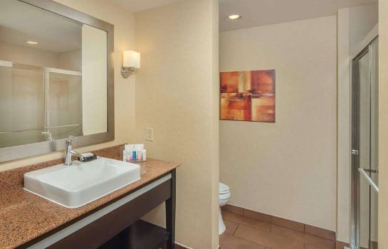 Zimmer Hampton Inn - Suites Chattanooga-Downtown TN