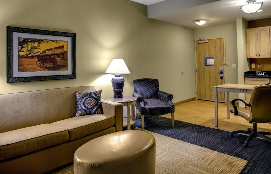 Suite Hampton Inn - Suites Dodge City KS