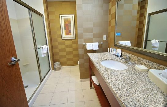 Zimmer Hampton Inn Detroit-Auburn Hills-Nrth-Great Lks Crossing- MI