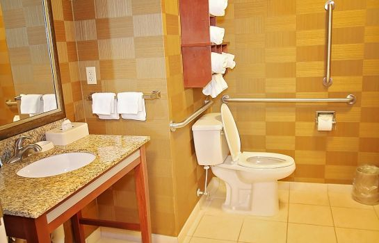 Zimmer Hampton Inn Detroit/Auburn Hills-North(Great Lakes Crossing)