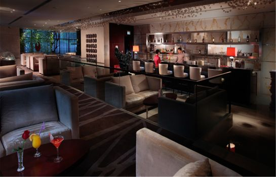 Hotel-Bar White Swan Hotel – Changsha