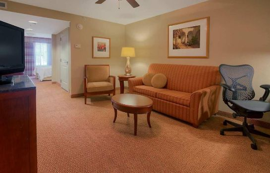 Suite Hilton Garden Inn Great Falls