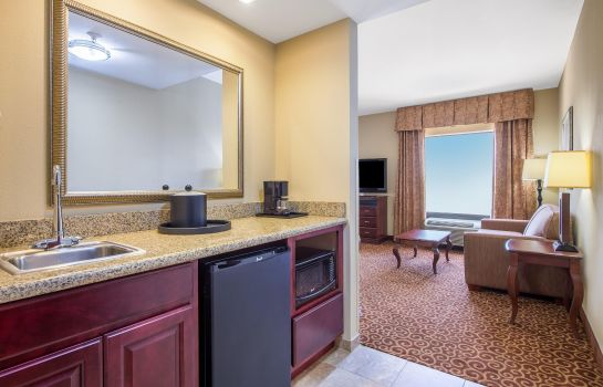 Suite Hampton Inn & Suites Oklahoma City - South