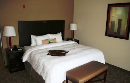 Zimmer Hampton Inn Greenville
