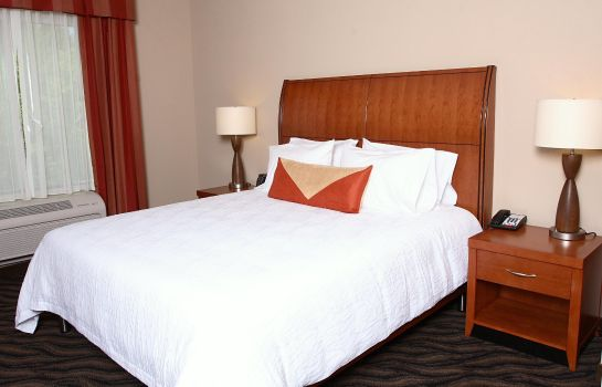 Suite Hilton Garden Inn Chesapeake-Suffolk