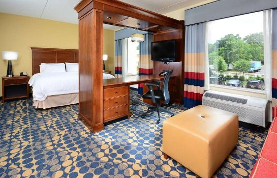Suite Hampton Inn - Suites Durham-North I-85 NC