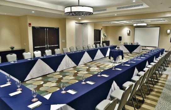 Conference room Hilton Garden Inn Liberia Airport