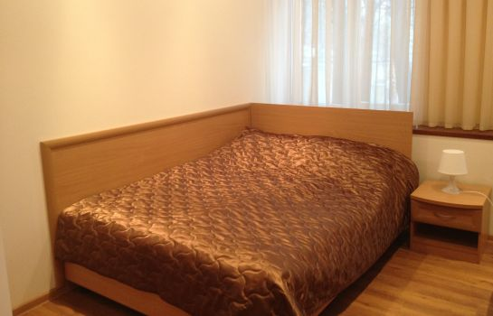 Single room (standard) Alekseevsky Hotel