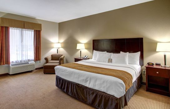 Zimmer Comfort Inn and Suites Alvarado