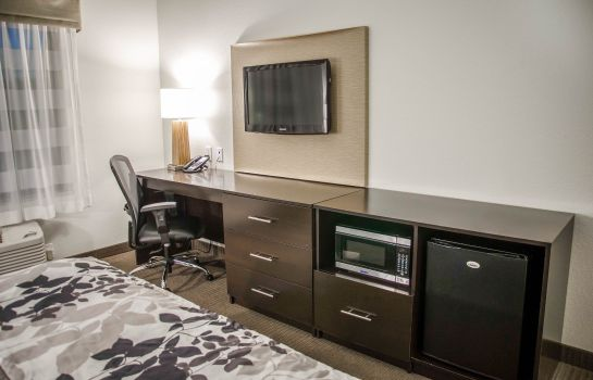 Kamers Sleep Inn & Suites Center
