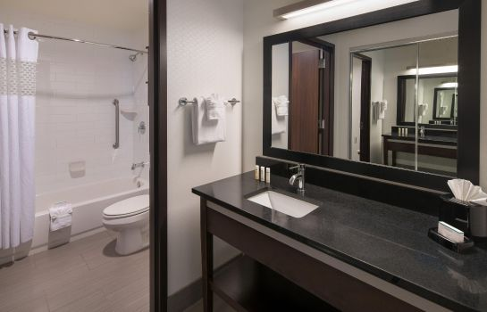 Zimmer Hampton Inn and Suites Denver Downtown-Convention Center CO