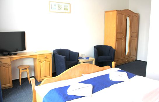 Double room (standard) Central Hotel