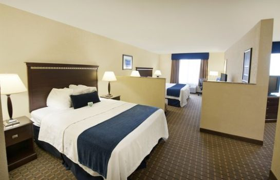 Room Holiday Inn Express & Suites ALLENTOWN WEST