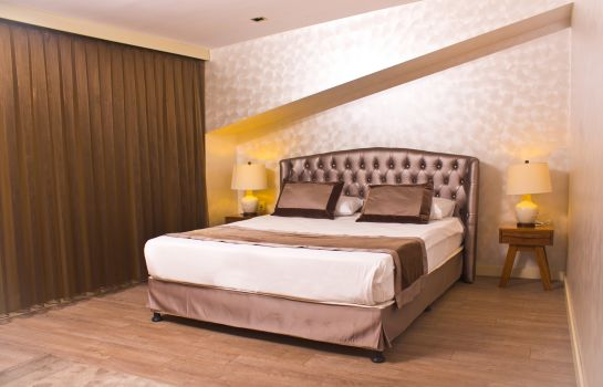 Double room (superior) Suiteness Taksim Hotel