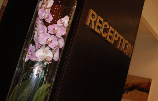 Reception Phoenicia Express