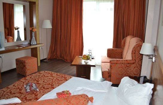 Single room (standard) Phoenicia Express