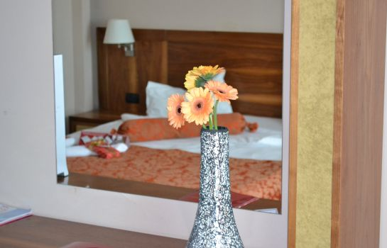 Double room (standard) Phoenicia Express