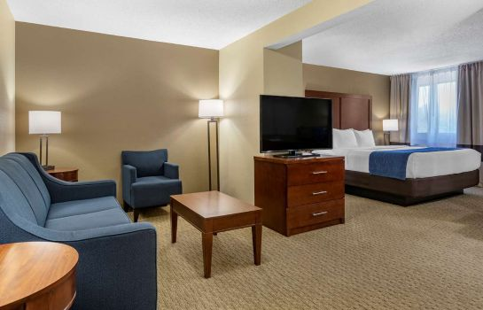 Suite Comfort Inn Near Greenfield Village