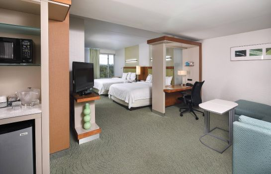 Suite SpringHill Suites Philadelphia Valley Forge/King of Prussia