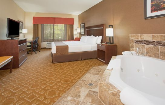 Suite Holiday Inn & Suites DURANGO CENTRAL