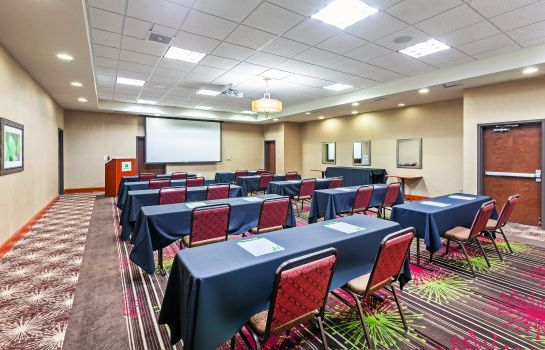 Sala konferencyjna Holiday Inn & Suites DURANGO CENTRAL