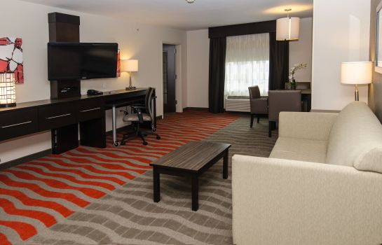 Zimmer Holiday Inn Express & Suites COLUMBUS - EASTON