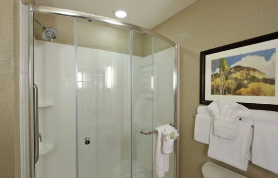 Suite Holiday Inn Express & Suites COLORADO SPRINGS-FIRST & MAIN
