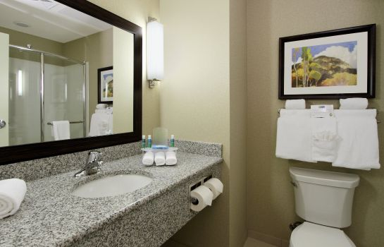 Zimmer Holiday Inn Express & Suites COLORADO SPRINGS-FIRST & MAIN