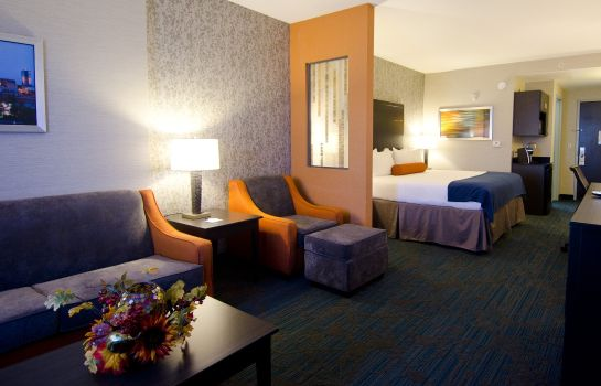 Suite Holiday Inn Express & Suites KNOXVILLE WEST - PAPERMILL DR