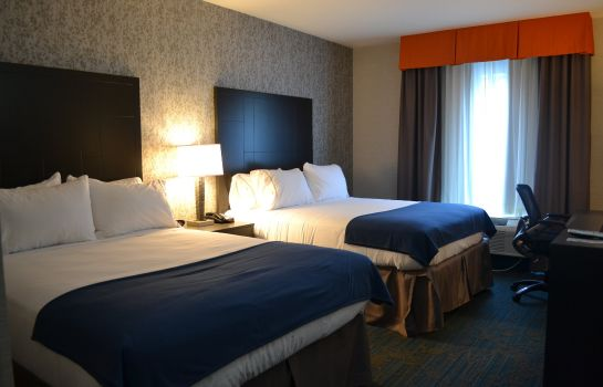 Zimmer Holiday Inn Express & Suites KNOXVILLE WEST - PAPERMILL DR