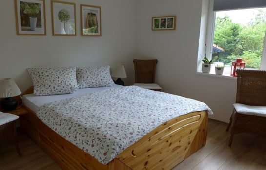Double room (standard) Klein aber fein Bed & Breakfast