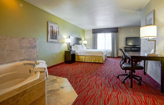 Room Holiday Inn Express & Suites INDIANAPOLIS NORTH - CARMEL