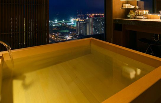 Double room (standard) City Hotel Seiunso